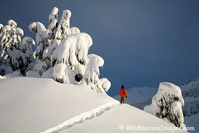 Self portrait, snowshoeing in the Chugach National Forest, Alaska.