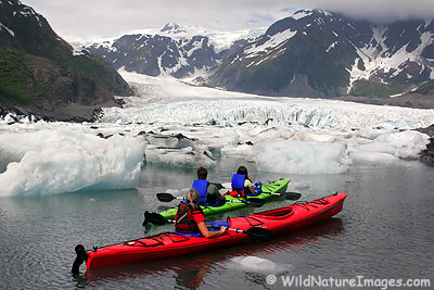 Kayaking in Kenai Fjords