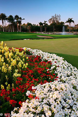 Golf Course at The Phoenician