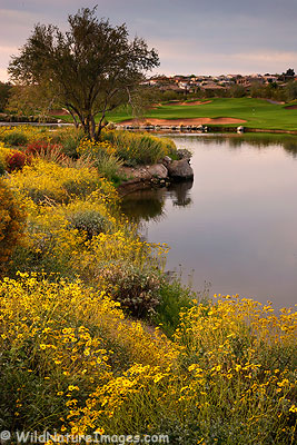 Sunridge Canyon Golf Course