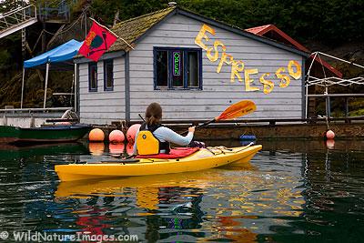 Espresso Stand Halibut Cove, Alaska