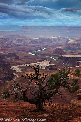 Green River Overlook, Canyonlands National Park, near Moab, Utah.