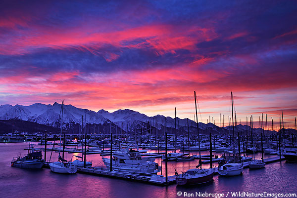 Seward Harbor Sunrise