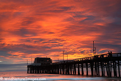 Newport Beach Pier, California.