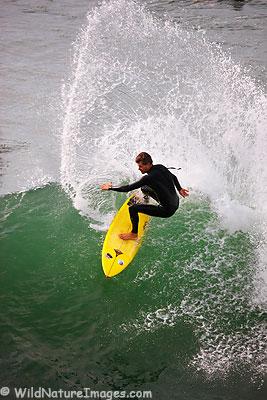 Ron Niebrugge surfing