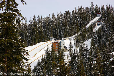 Jumpiong Hills, Whistler Olympic Center, Canada.