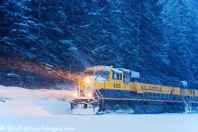 Alaska Railroad in a winter storm, near Seward, Alaska.
