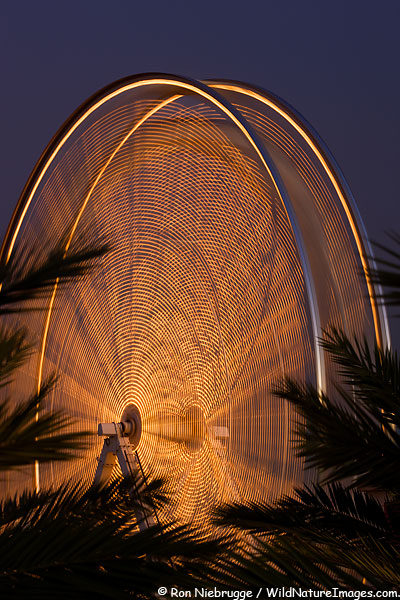 A ferris Wheel at night, Long Beach, California.