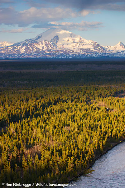 Mt Drum, Wrangel-St. Elias National Park, Alaska.
