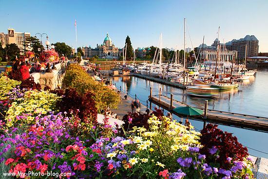 The Harbor and Legislative Building, Victoria, British Columbia, Canada