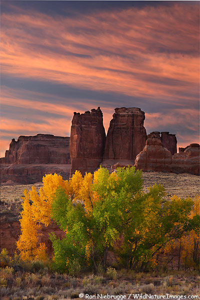 Courthouse Wash, Arches National Park, Utah.