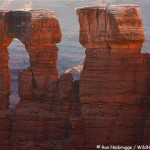 Monument Basin, Canyonlands