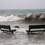 Stormy Seward!