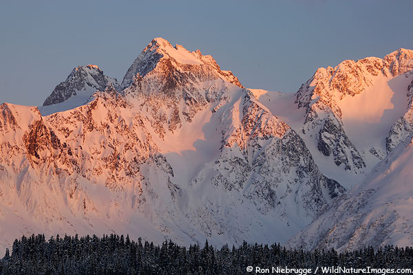 Another photo from Thursday evening of the Chugach National Forest, Seward, Alaska.