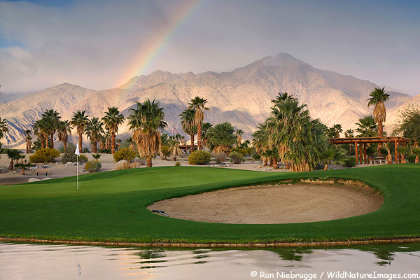 Golf course at the Springs at Borrego, Borrego Springs, California.