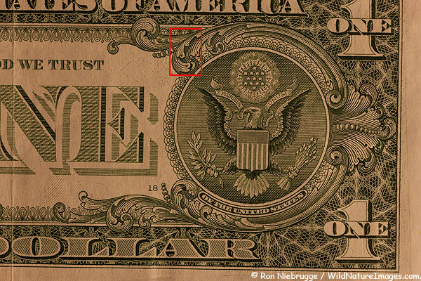 Full frame version of the dollar.