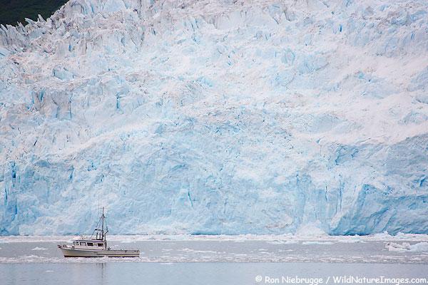 Aialik Glacier, Kenai Fjords National Park, Alaska.