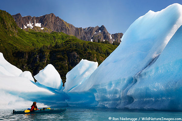 Janine kayaking in Bear Glacier Lagoon, Kenai Fjords National Park, Alaska.