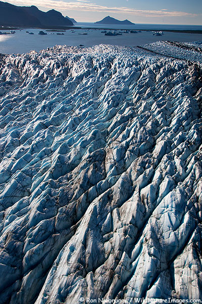 Bear Glacier, Kenai Fjords National Park, Alaska.