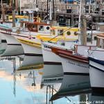 Boats, Fishermans Wharf