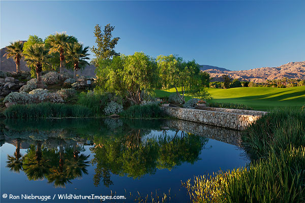 Celebrity Course next to the Hyatt Grand Champion Resort, Indian Wells, California.