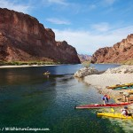 Kayaking the Colorado River