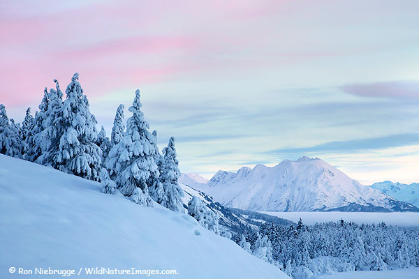 Christmas morning on the Kenai Peninsula, Chugach National Forest, Alaska.