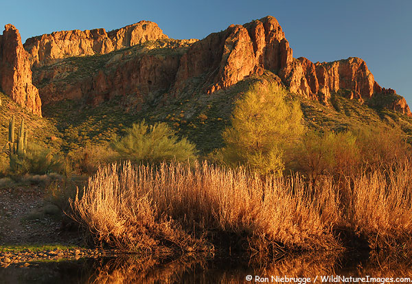 Salt-River, Tonto National Forest, Arizona.