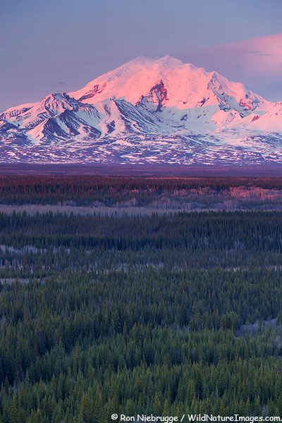 Mount Drum, Wrangell-St Elias National Park, Alaska.
