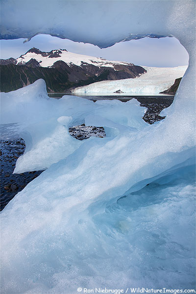 Iceberg in front of Aialik Glacier, Kenai Fjords National Park, Alaska.