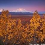 Mt. Mc Kinley in Fall