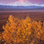 Best Time Visit Alaska