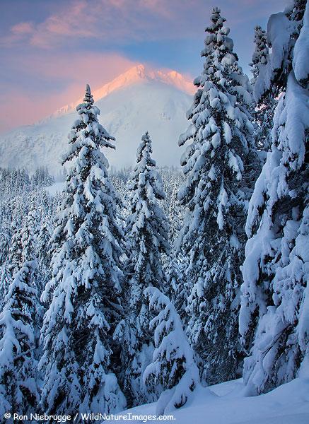 Sunrise along the Lost Lake Trail, Chugach National Forest, Alaska.