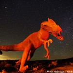 Dinosaur Night Sky