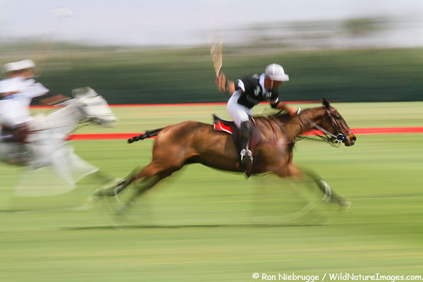 Players at the Empire Polo Club, Indio, California.