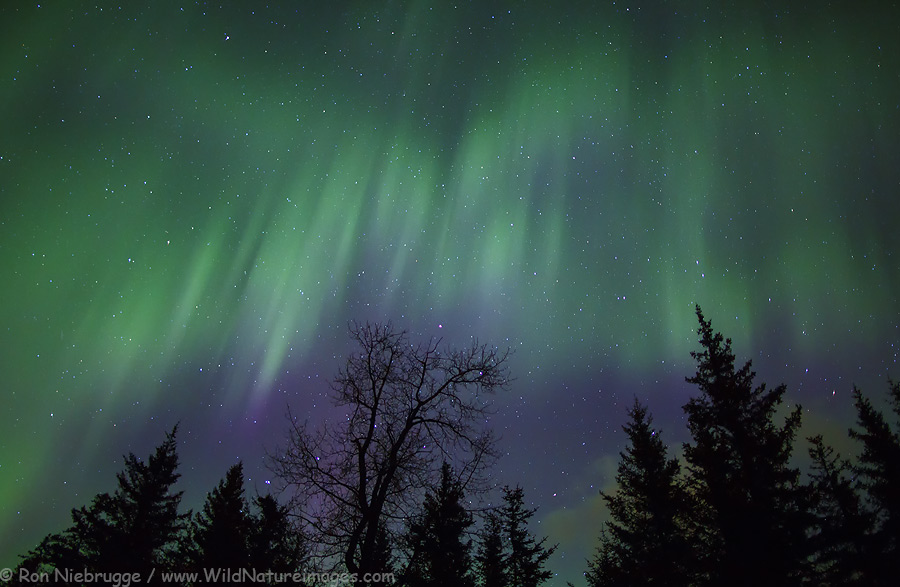 Northern Lights near Seward, Alaska.