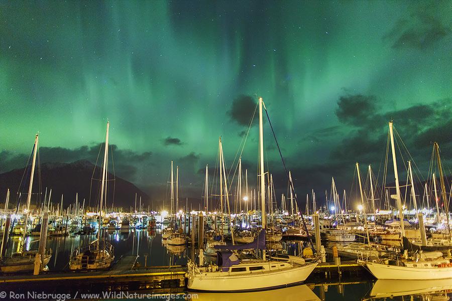 Aurora Borealis over the Seward Boat Harbor last Wednesday.