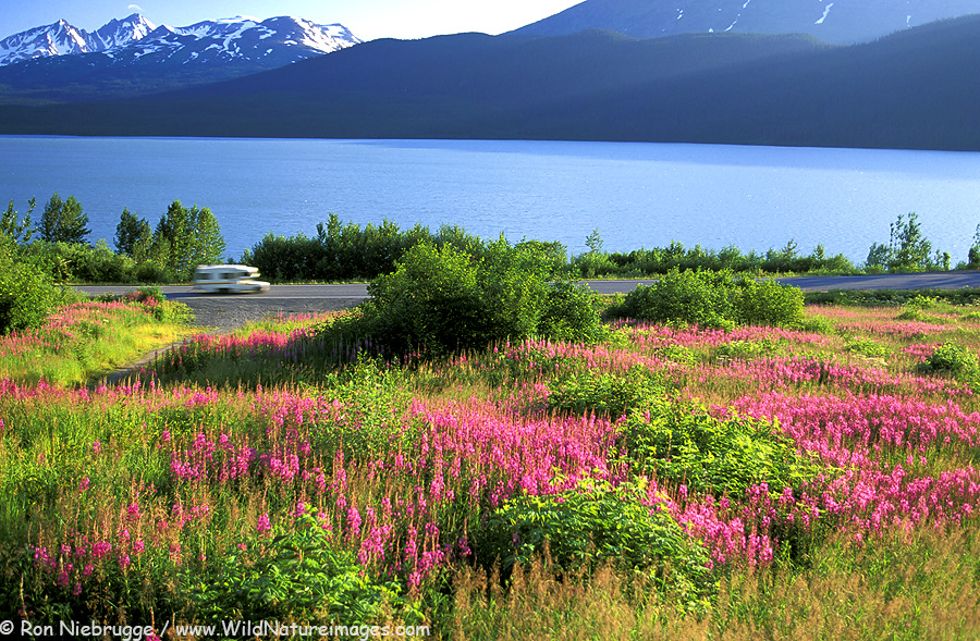 A motorhome on the Seward Highway passes along Kenai Lake, Alaska.