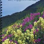 2015 Alaska Engagement Calender