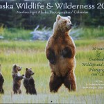 2015 Alaska Wilderness and Wildlife Callender
