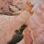 Valley of Fire Color