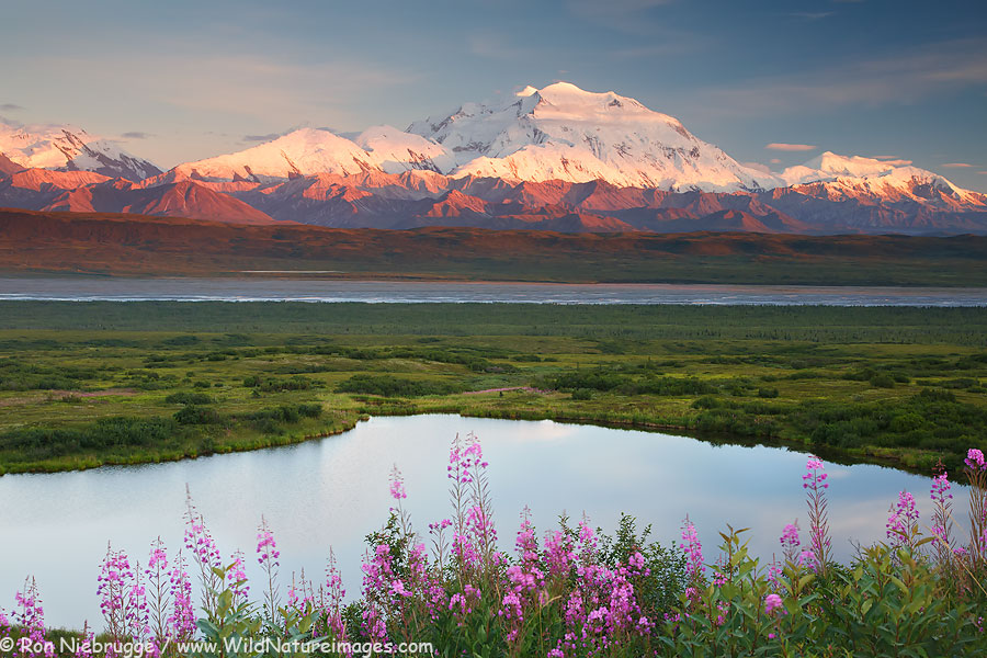 Mt McKinley also known as Denali, Denali National Park, Alaska.