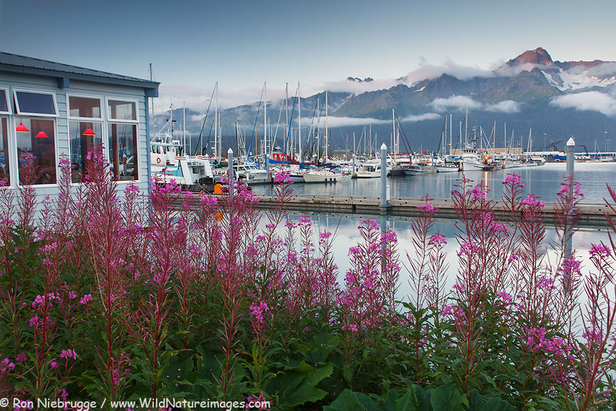 Seward Small Boat Harbor at the head of Resurrection Bay, Seward, Alaska.
