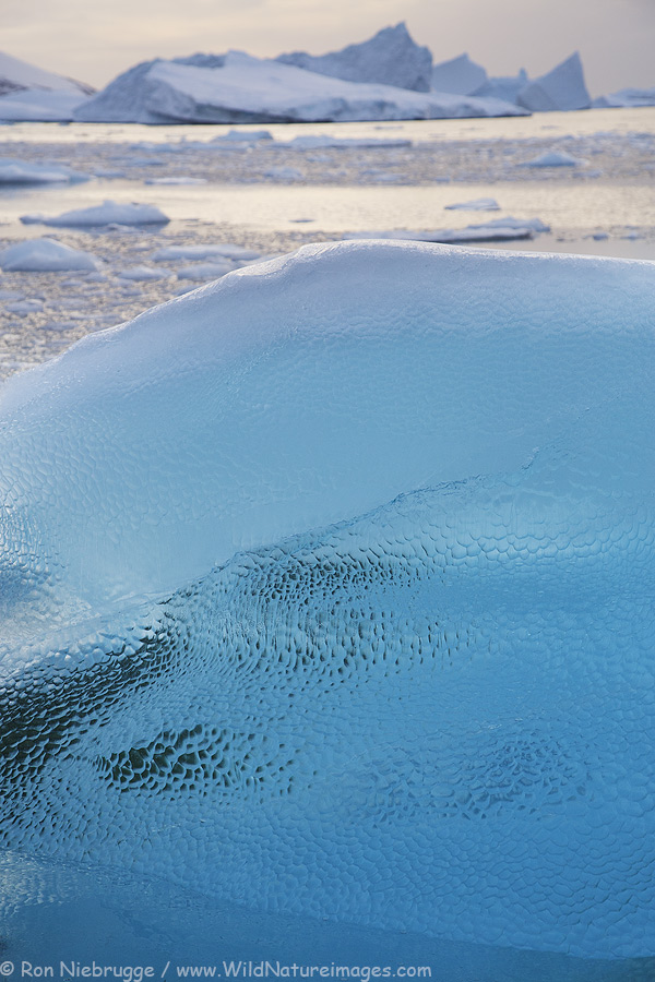 Ice near Booth Island, Antarctica.