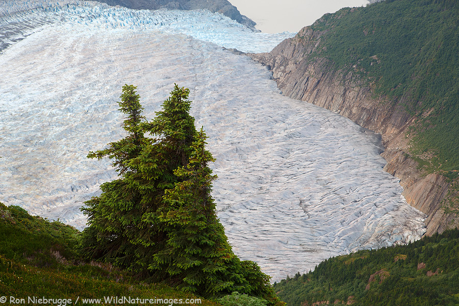 Mendenhall Glacier, Tongass National Forest, Alaska.