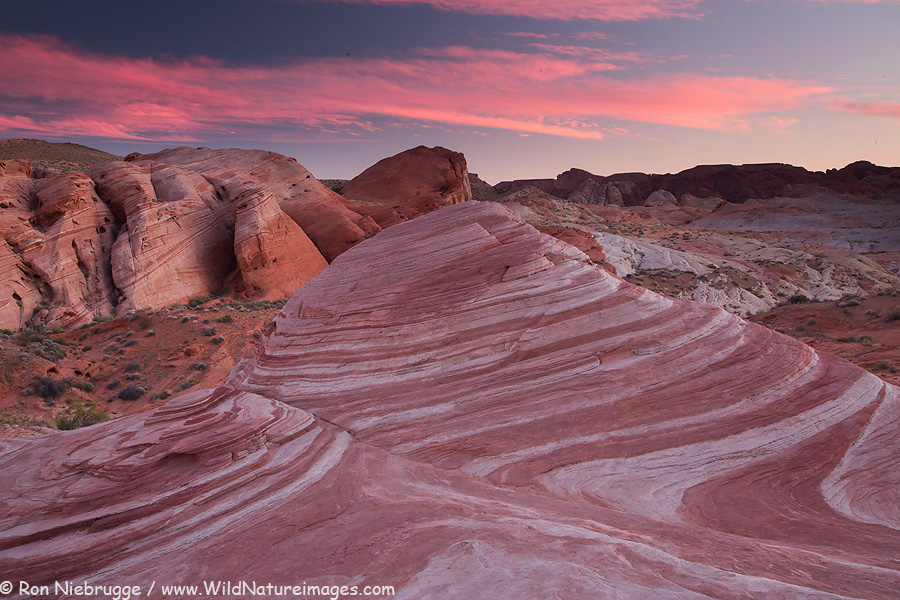 Fire Wave, Valley of Fire State Park, Nevada.