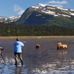 Alaska Bear Photo Tour