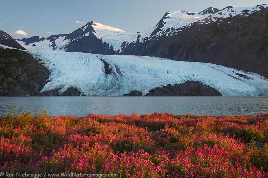 Portage Glacier, Chugach National Forest, Alaska.