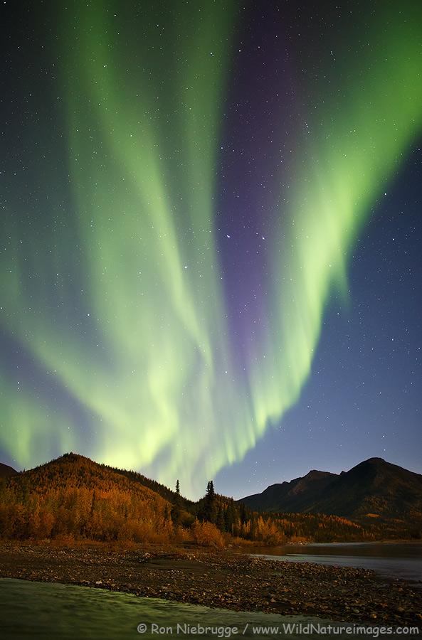 Autumn aurora borealis in the Alaska Brooks Range.