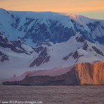 Picking the Best Antarctica Tour